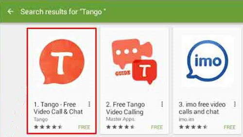 Install Tango for windows